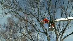 Arborist cutting branches from man-lift #2 Stock Footage