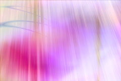 Wedding Motion Background -- Romantic 04 4x3 NTSC - stock footage