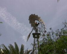Farmer Watermill 2 PAL Stock Footage