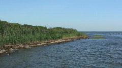 Marsh on Fire Island National Seashore Beach Stock Footage