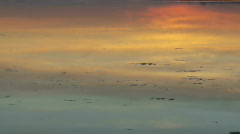 ice-floating-on-river-with-tide-with-sunset-reflection - stock footage