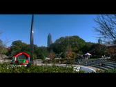 Georgia Cityscape Stock Footage