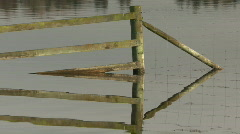 Slow zoom from drowned fence Stock Footage