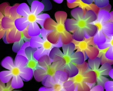 Flower Turn Loopable Bacvkground Stock Footage