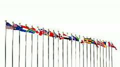 World flags 2 on a white backgroud HD1080 Stock Footage