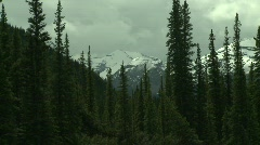 Snow covered peak and forest Stock Footage