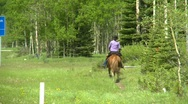 Stock Video Footage of horseman in the mountains, #1