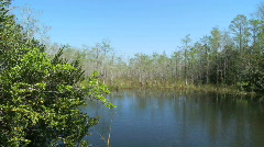 Lake in the Glades Stock Footage