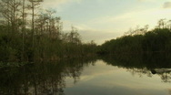 Sunset in the Everglades Stock Footage