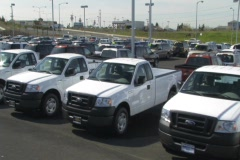 Ford Trucks - stock footage