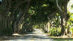 Miami street - stock footage