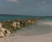 Tropical beach on curacao 1 PAL Stock Footage
