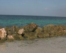 Tropical beach on curacao 2 PAL Stock Footage
