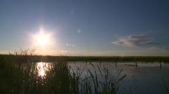 Late evening sun and pond Stock Footage