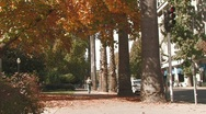 Woman Jogging in City Park Stock Footage