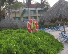 Lifebuoy on a beach PAL Stock Footage