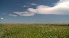 Short grass prairie blowing in wind, #6 Stock Footage