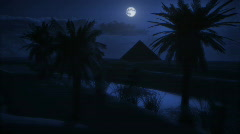 1073 Midnight Moon at the Oasis HD Stock Footage
