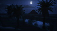 Stock Video Footage of 1073 Midnight Moon at the Oasis HD