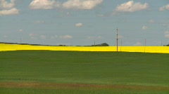 Agriculture, canola fields and wheat Stock Footage