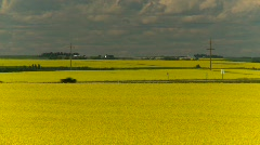Agriculture, canola fields and highway, #2 Stock Footage
