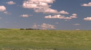 Agriculture, wind and wavy barley, #1 Stock Footage