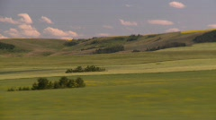 agriculture, wheat fields and pasture land, drive along medium long - stock footage