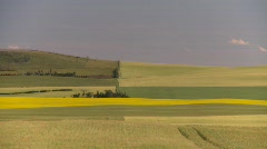 Agriculture, canola and wheat fields, #4 quilted patchwork Stock Footage