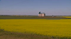 Agriculture, canola and wheat fields and grain elevators, #2 medium Stock Footage