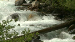River and waterfall, mountain stream, medium tight fallen log in fg zoom Stock Footage