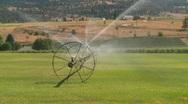 Agriculture, irrigation sprinkler, farm, medium on wheeld sprinkler rig Stock Footage