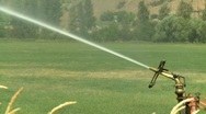 Agriculture, irrigation sprinkler, tight on sprinkler head Stock Footage