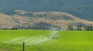 Agriculture, farm irrigation, #2 and arid hills, medium shot Stock Footage