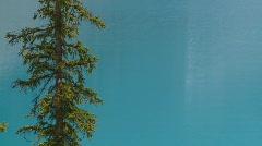 Moraine lake, Banff, #23 on lake and tree offset Stock Footage