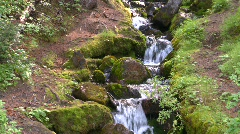 Mossy mountain stream, #7 eroded path on sides Stock Footage