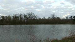 Crane past Louisiana wetlands Stock Footage