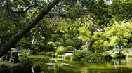 Stock Video Footage of Japanese Tea Garden, San Francisco