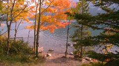 Vibrant autumn colors, #2 Stock Footage