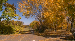 Fitness, roller blading on bike path, #3 autumn trees Stock Footage