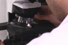 Microscope examination NTSC Stock Footage