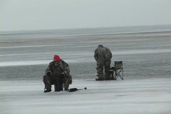 Ice fishing for perch - stock footage