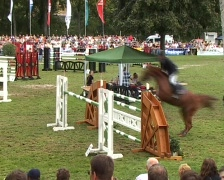 Show jumping Stock Footage