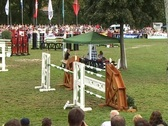 Stock Video Footage of Show jumping