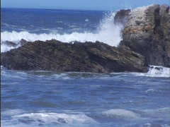 Ocean Rocks Birds Stock Footage