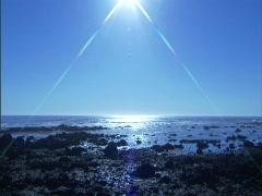 Ocean_Rocks_Sun-Flare Stock Footage