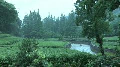 Hang Zhou Tea Fields and Tea House 1 Stock Footage