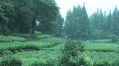 Hang Zhou Tea Fields and Tea House 3 Stock Footage