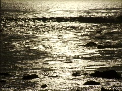 Ocean_Shimmer_Golden Stock Footage
