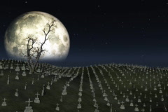 Graveyard with full moon behind,ground fog and tree flowing in the wind Stock Footage