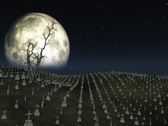 Stock Video Footage of Graveyard with full moon behind,ground fog and tree flowing in the wind
